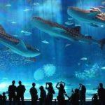 Atrakcje turystyczne, zwiedzanie